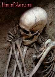the-bone-kings180x250