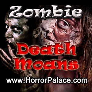 Zombie Death Moans PC Game